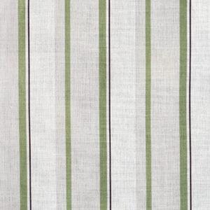 Narrow Stripe Grass web_0010